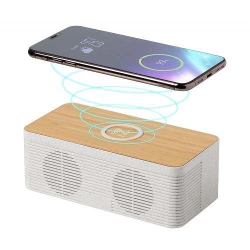 Enceinte chargeur induction...
